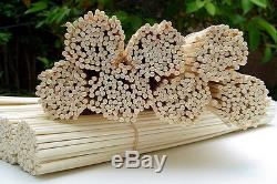 100 Rattan Natural Gold Reed Diffuser High Quality Sticks 12x3mm