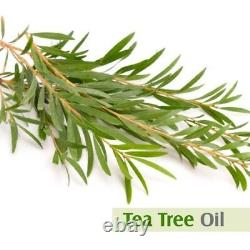 Tea Tree Oil 100% Natural Pure Essential Oil 10ml To 500ml (Free shipping)