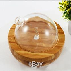 Wood Glass Essential Oil Nebulizer Aromatherapy Diffuser Humidifier Low NoiH4N7